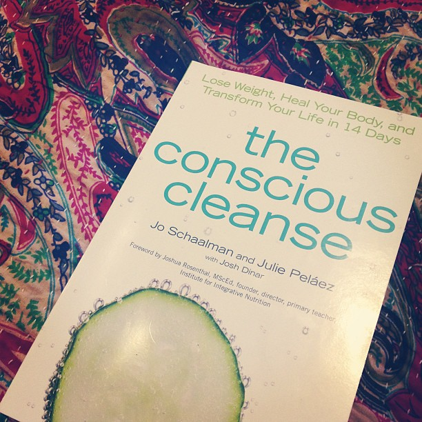 conscious cleanse